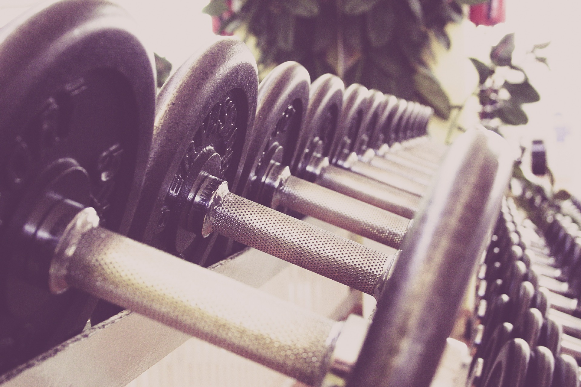 When Should I Workout For Best Results?